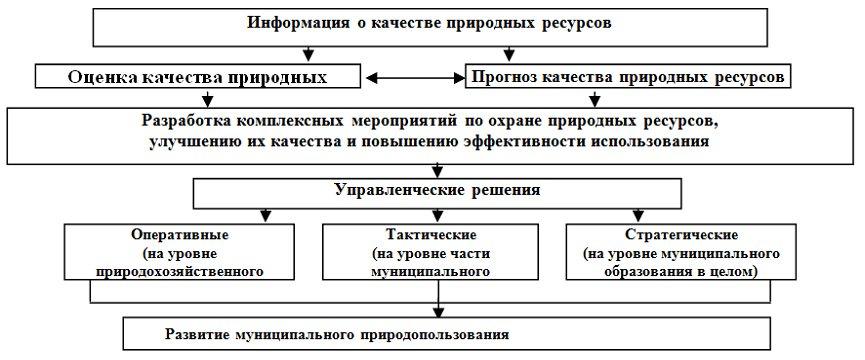 управлении муниципальным